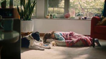 Lysol TV Spot, 'Comfortable Everywhere' - Thumbnail 1