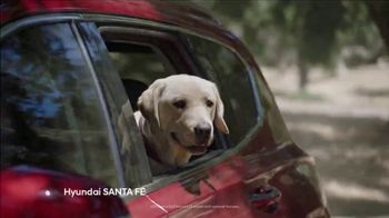 Hyundai TV Spot, 'Size of Adventure' [T2] - Thumbnail 3
