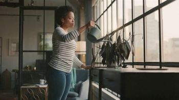 QuickBooks Live TV Spot, 'Gaming: Plant' - 5581 commercial airings