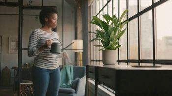 QuickBooks Live TV Spot, 'Gaming: Plant' - Thumbnail 7