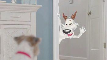 Purina Beggin' TV Spot, 'Bonkers for Beggin: Stairs' - Thumbnail 3
