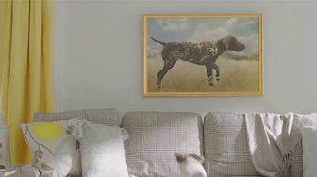Purina Beggin' TV Spot, 'Bonkers for Beggin: Stairs' - Thumbnail 6