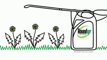 Roundup Weed Killer TV Spot, 'The Dawn of a New Lawn'