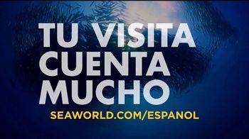 SeaWorld TV Spot, 'Desde nuestro parque hasta el planeta' [Spanish] - Thumbnail 8