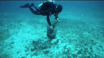 SeaWorld TV Spot, 'Desde nuestro parque hasta el planeta' [Spanish] - Thumbnail 5