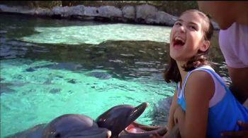 SeaWorld TV Spot, 'Desde nuestro parque hasta el planeta' [Spanish] - Thumbnail 6