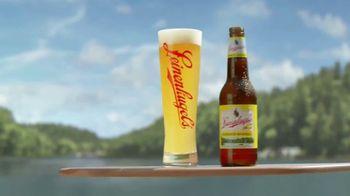 Leinenkugel's Summer Shandy TV Spot, 'The Perfect Balance' Song by Vinyl Pinups - Thumbnail 5