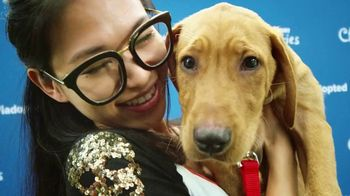 PetSmart Charities TV Spot, '8 Million Pets Helped' Song by Yoko Ono - Thumbnail 1