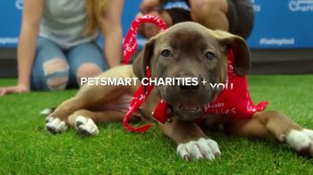 PetSmart Charities TV Spot, '8 Million Pets Helped' Song by Yoko Ono - Thumbnail 2