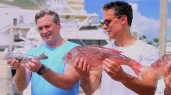 Mississippi Gulf Coast TV Spot, 'Trophy(ish) Fish' - Thumbnail 4