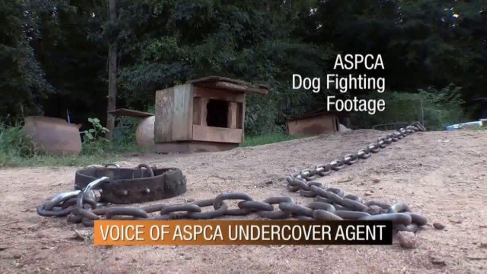 ASPCA TV Commercial, 'Dog Fighting'