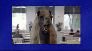 GEICO TV Spot, ''Jeopardy!: Camel'