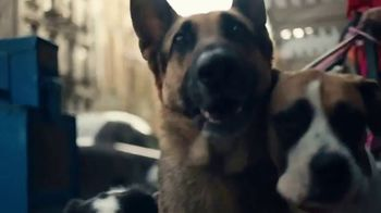 Trulia TV Spot, 'Discover a Place You'll Love to Live: Dog Walker Dana' - Thumbnail 5