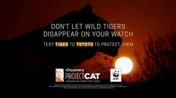 World Wildlife Fund TV Spot, 'Discovery Project C.A.T.: Roar of the Tiger' - Thumbnail 8