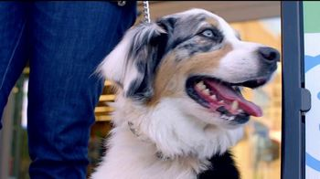 VIP Pet Care TV Spot, 'Walk-Ins Welcome' - Thumbnail 1