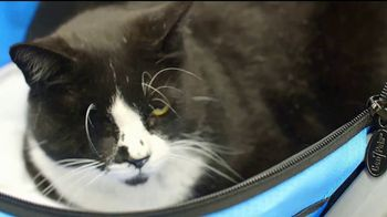 VIP Pet Care TV Spot, 'Walk-Ins Welcome' - Thumbnail 7
