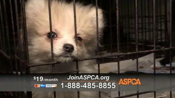 ASPCA TV Spot, 'Dark and Distressing' - Thumbnail 6