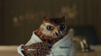 TripAdvisor TV Spot, 'This Bird's Words' - Thumbnail 1