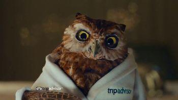 TripAdvisor TV Spot, 'This Bird's Words' - Thumbnail 5