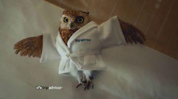 TripAdvisor TV Spot, 'This Bird's Words' - Thumbnail 8