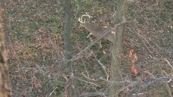 Swhacker Broadheads TV Spot, 'Two-Slice Technology' Featuring Billy Parker - Thumbnail 1