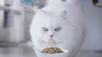 Fancy Feast Creamy Delights TV Spot, 'Just the Right Touch' - Thumbnail 7