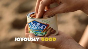 Blue Diamond Almonds TV Spot, 'The Nut Job 2: Get Going' - Thumbnail 1