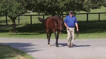 Claiborne Farm TV Spot, 'Runhappy'