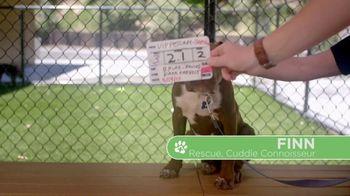 VIP Pet Care TV Spot, 'Clear the Shelters' - Thumbnail 1