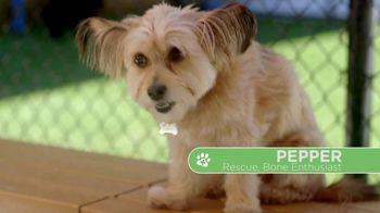 VIP Pet Care TV Spot, 'Clear the Shelters' - Thumbnail 2