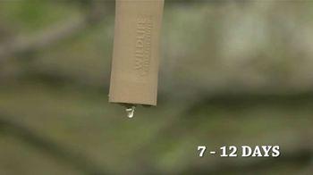 Wildlife Research Center TV Spot, 'Scrape Hunting' Featuring Don Kisky - Thumbnail 4