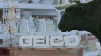 GEICO TV Spot, 'Animal Planet: Bull in a China Shop' - Thumbnail 9