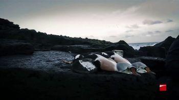 Benelli Super Black Eagle 3 TV Spot, 'Alaska' - Thumbnail 2