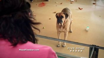 Five Star TV Spot, 'Chaos In The Cafeteria' - Thumbnail 5