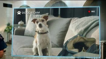 Priceline.com TV Spot, 'Doggie Cam' Featuring Kaley Cuoco - Thumbnail 2