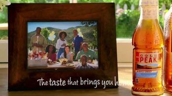 Gold Peak Iced Tea TV Spot, 'Bring Us All Together' - Thumbnail 7