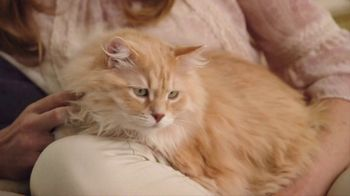Blue Buffalo Indoor Health Cat Food TV Spot, 'Cassie' - Thumbnail 6