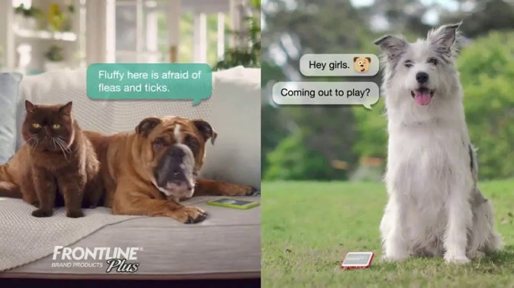Frontline Plus TV Commercial, 'For Dogs and Cats'