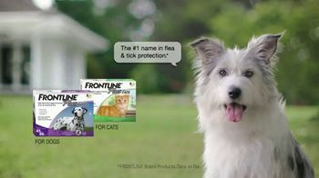 Frontline Plus TV Spot, 'For Dogs and Cats' - Thumbnail 10