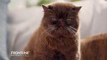 Frontline Plus TV Spot, 'For Dogs and Cats' - Thumbnail 3