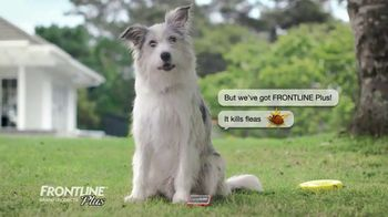 Frontline Plus TV Spot, 'For Dogs and Cats' - Thumbnail 4