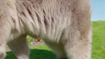PGA National Resort and Spa TV Spot, 'The Bear Trap' - Thumbnail 8