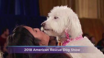 Hallmark Movies Now TV Spot, '2018 American Rescue Dog Show'