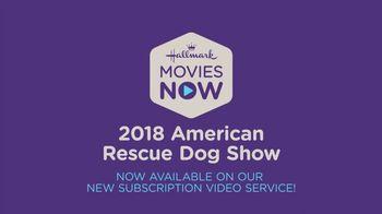 Hallmark Movies Now TV Spot, '2018 American Rescue Dog Show' - Thumbnail 9