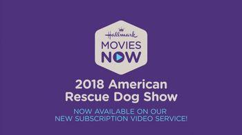 Hallmark Movies Now TV Spot, '2018 American Rescue Dog Show' - Thumbnail 8