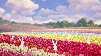 Travel Oregon TV Spot, 'Only Slightly Exaggerated: Tulips' - Thumbnail 4