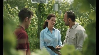 Bank of the West Commercial Banking TV Spot, 'Vineyard'