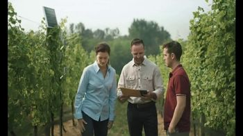Bank of the West Commercial Banking TV Spot, 'Vineyard' - Thumbnail 6