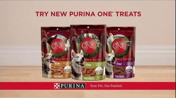 Purina ONE SmartBlend True Instinct TV Spot, 'Evolved' - Thumbnail 9