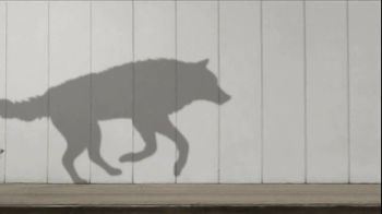 Purina ONE SmartBlend True Instinct TV Spot, 'Evolved' - Thumbnail 2